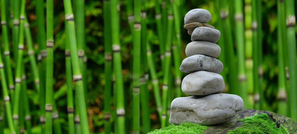 Garden Therapy: How Can Gardening Reduce Stress?