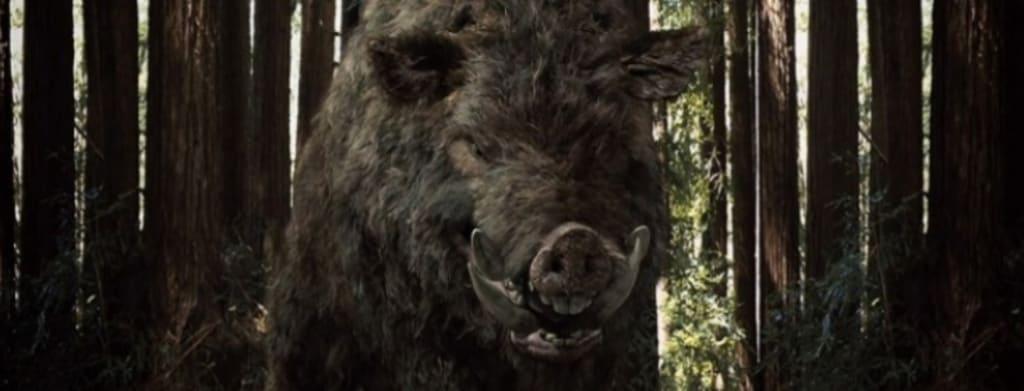 'Boar' (2017)