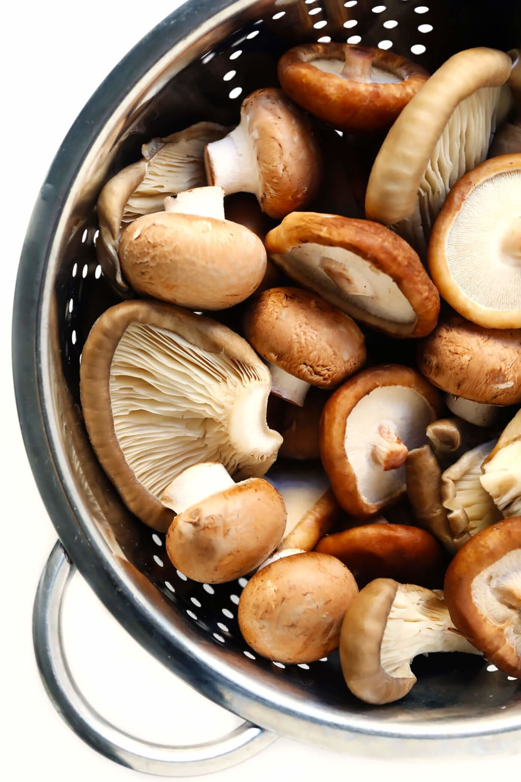 5 Mushrooms You Should Know