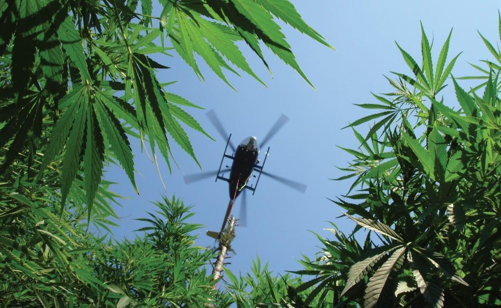 Why Is Marijuana Still Illegal?