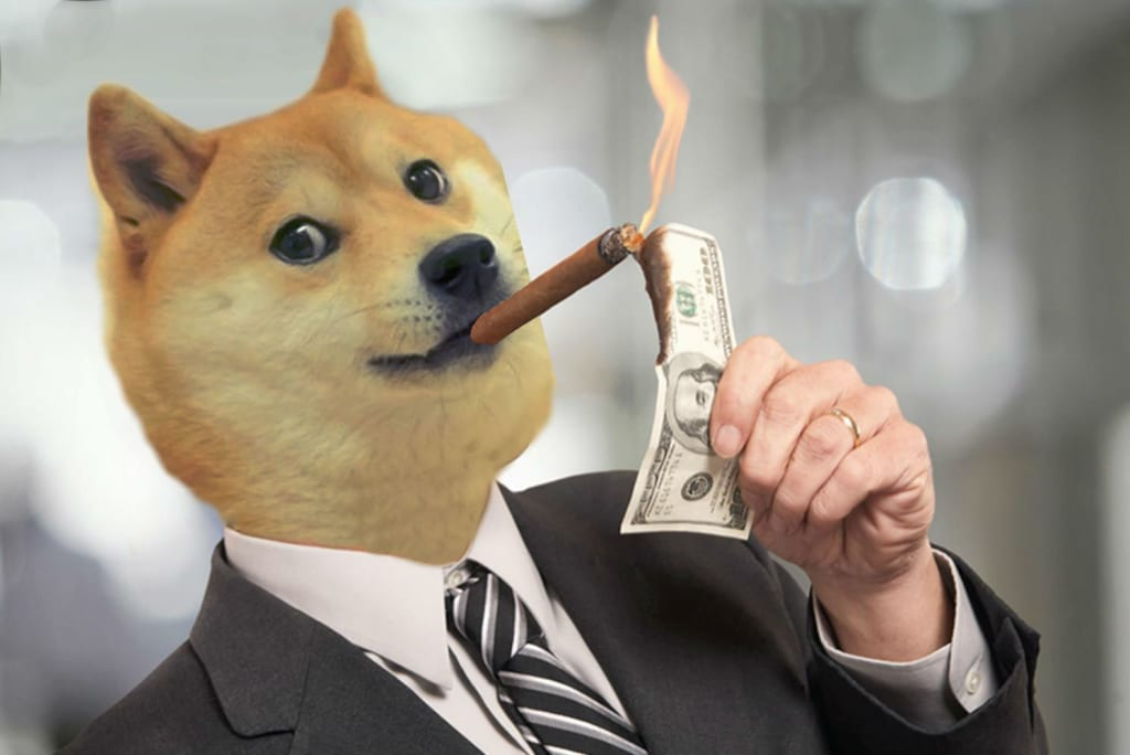 Image result for dogecoin dollars