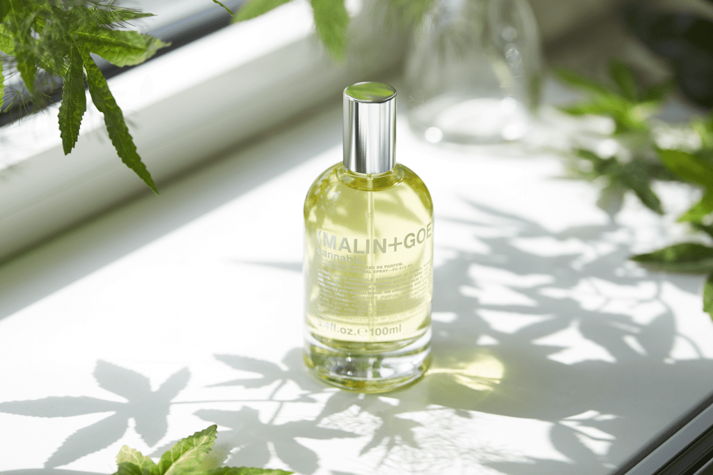 Best Cannabis Perfumes You Can Try