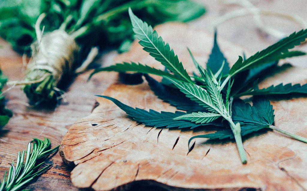 Things Cannabinoids Do Besides Get You High