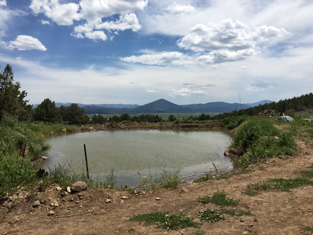 Wolf Run at Wallace Ranch and Sanctuary