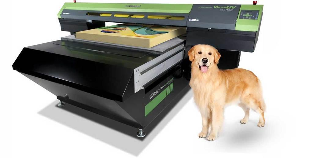 High Tech Dog Treat