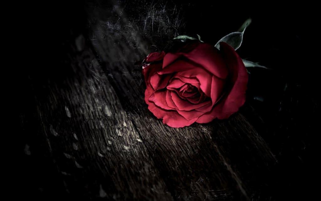A Broken and Betrayed Heart