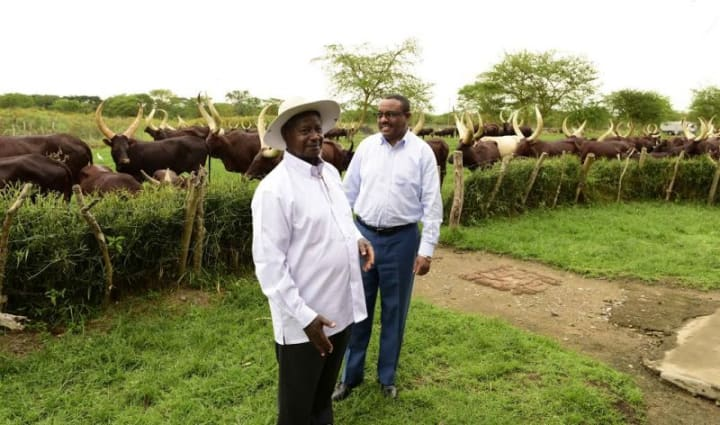 10 Expensive Things Owned By Ugandan President Yoweri Museveni