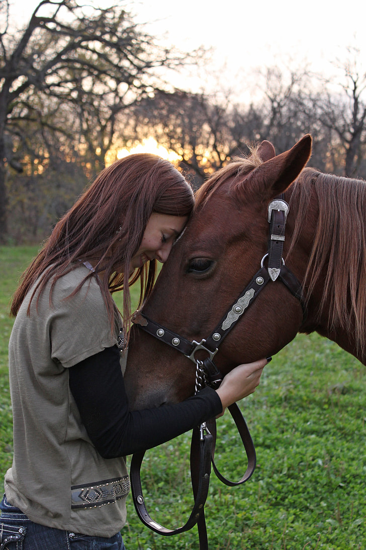 Dating Woman Horse.