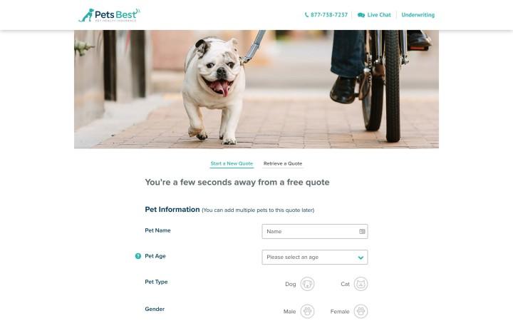 Pet Insurance Companies >> Best Pet Insurance Companies