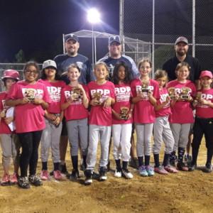 Twinsburg Youth Softball League - Photo Album - Pink Panthers