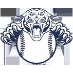 Twinsburg Youth Softball League