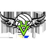 High Velocity Volleyball