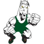 Mounds View Wrestling