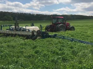 No-till planting into LowBoy and crimson clover mix - Eastern PA, May 2020