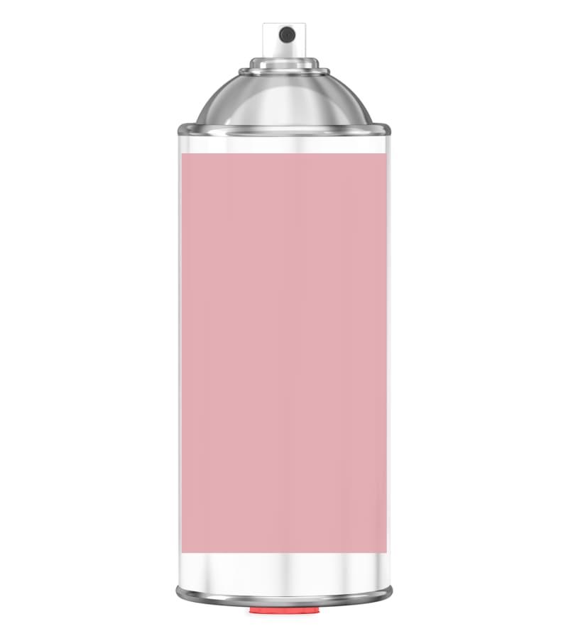 RAL 3015 Light pink Sprayburk 2K