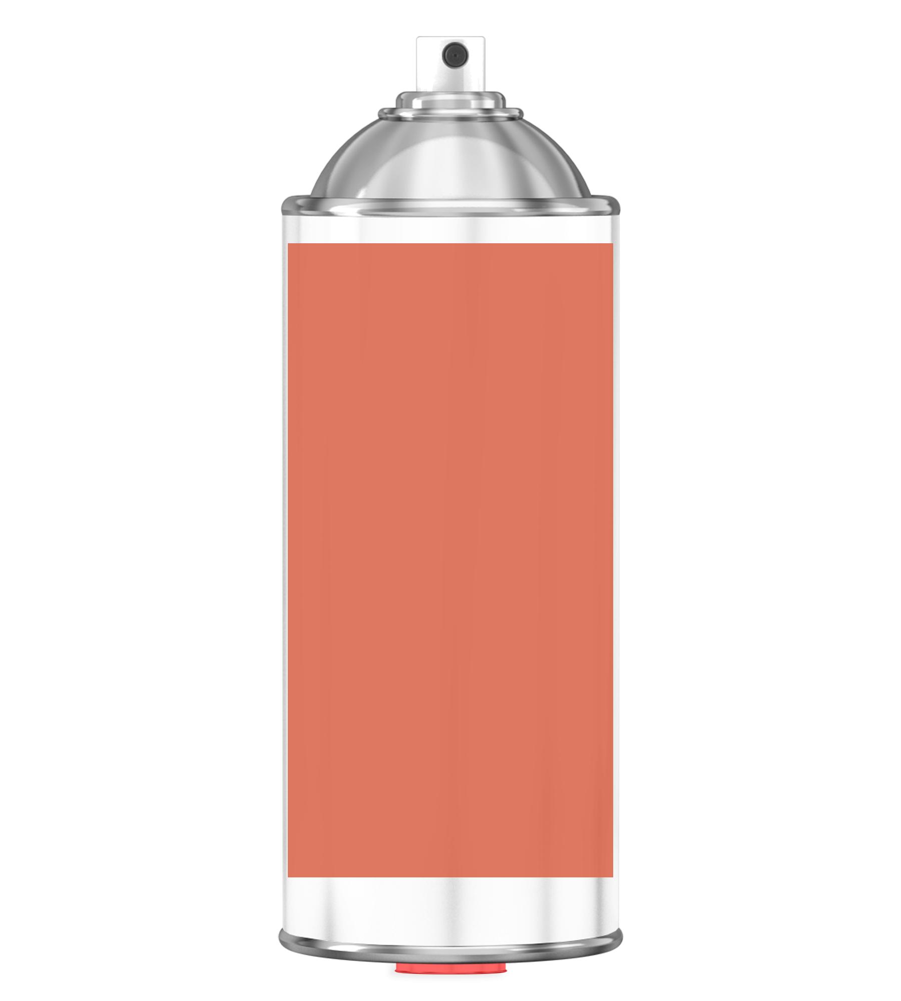 RAL 2012 Salmon orange Sprayburk 2K