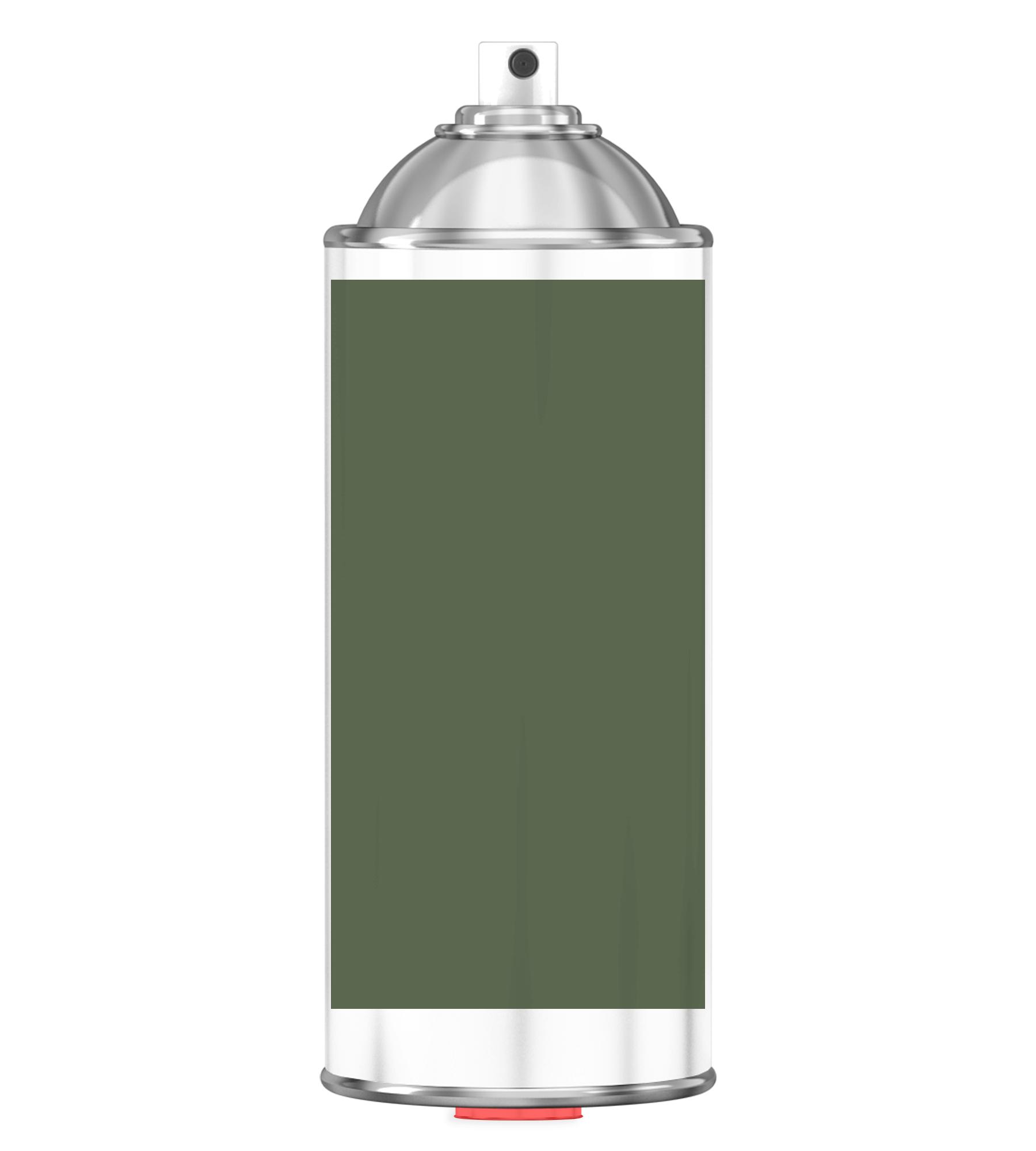 RAL 6003 olive green Sprayburk 2K
