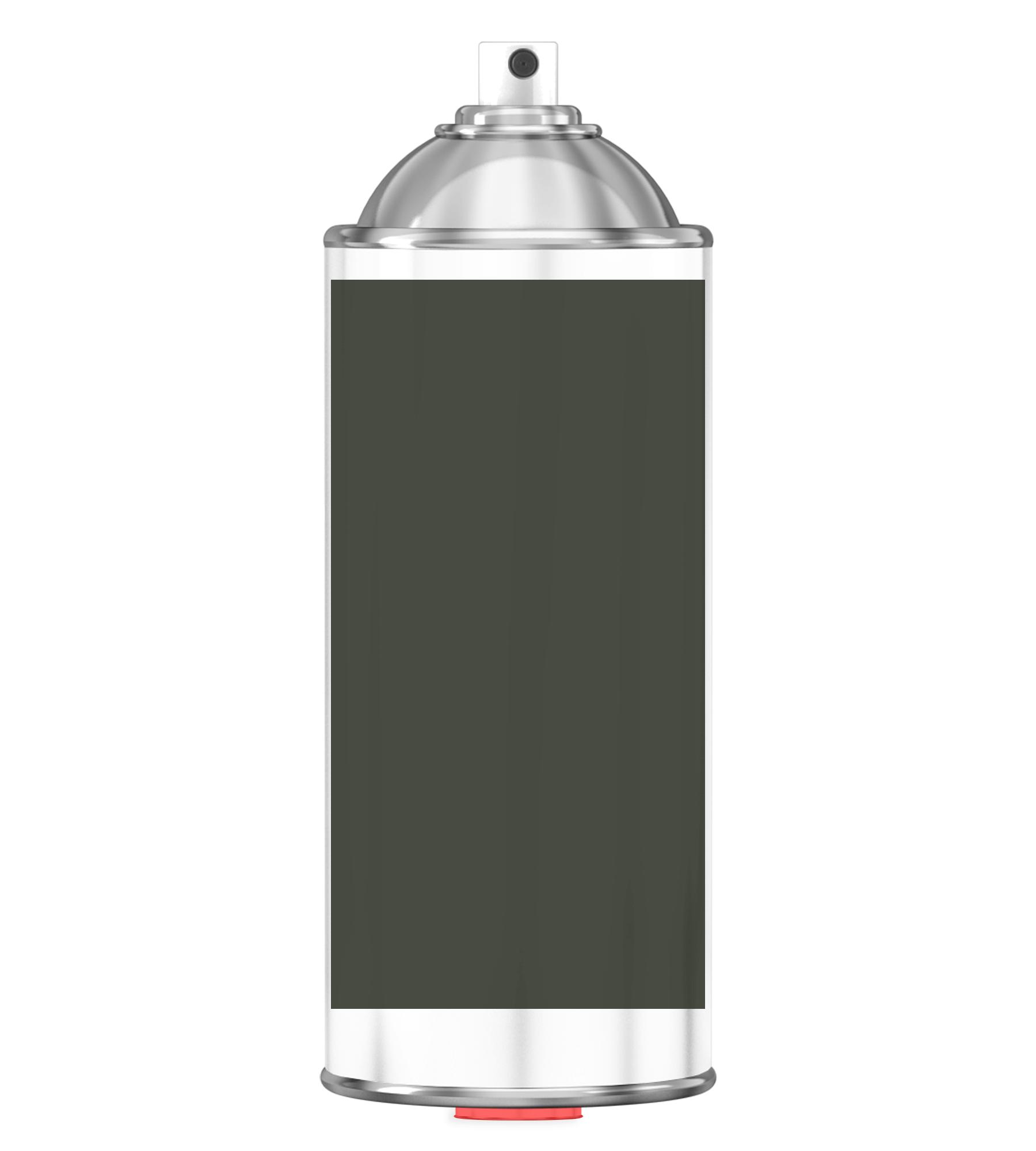 RAL 6008 Brown green Sprayburk 2K