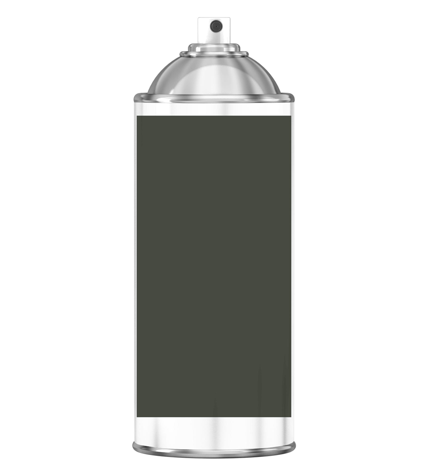 RAL 6008 Brown green Sprayburk