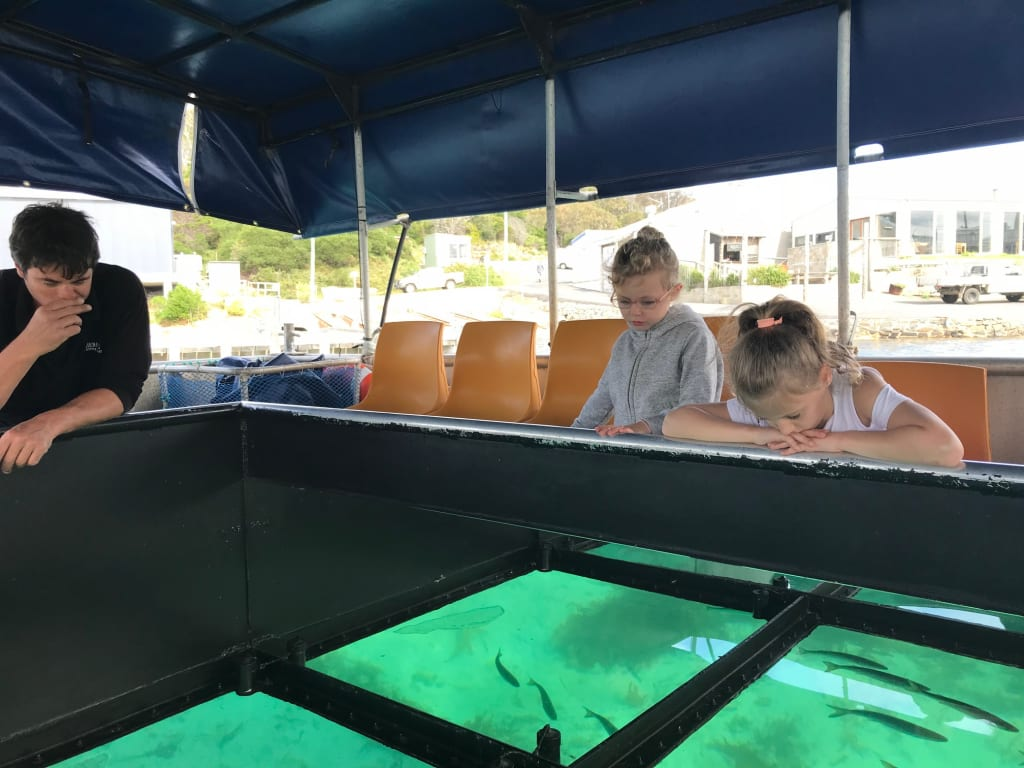 photo of girls looking at fish in Bicheno