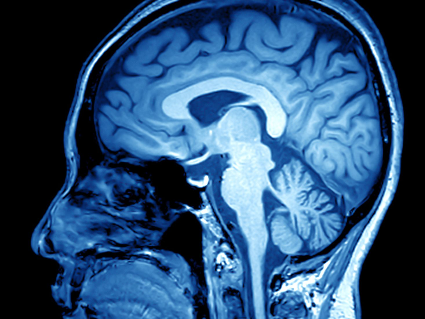 Jis 0816 health brain scan o3yznh
