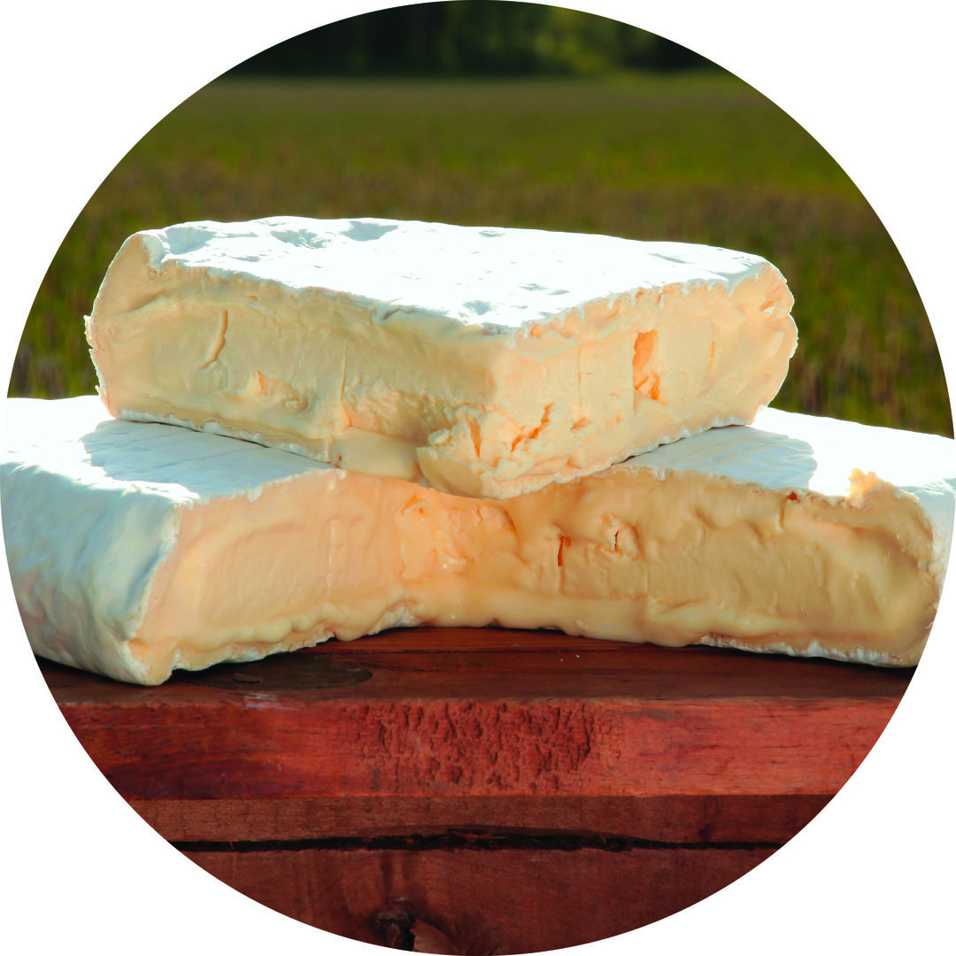 Jis 1215 cheese bloomy jgw3vz