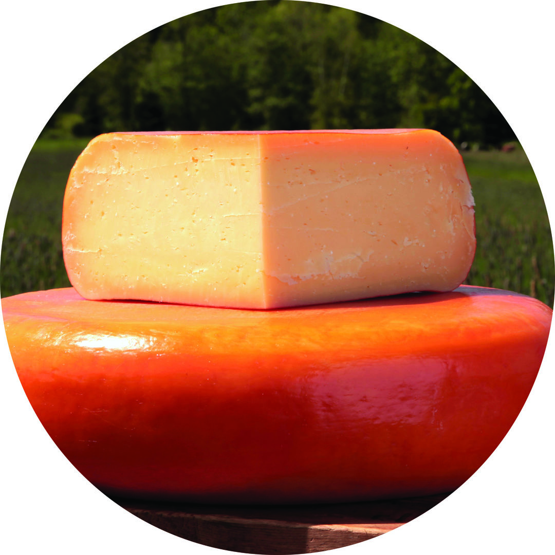 Jis 1215 cheese gouda b2epab