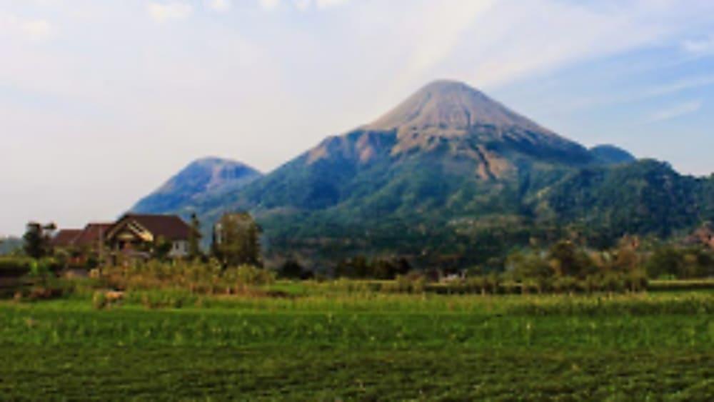gunung pawitra