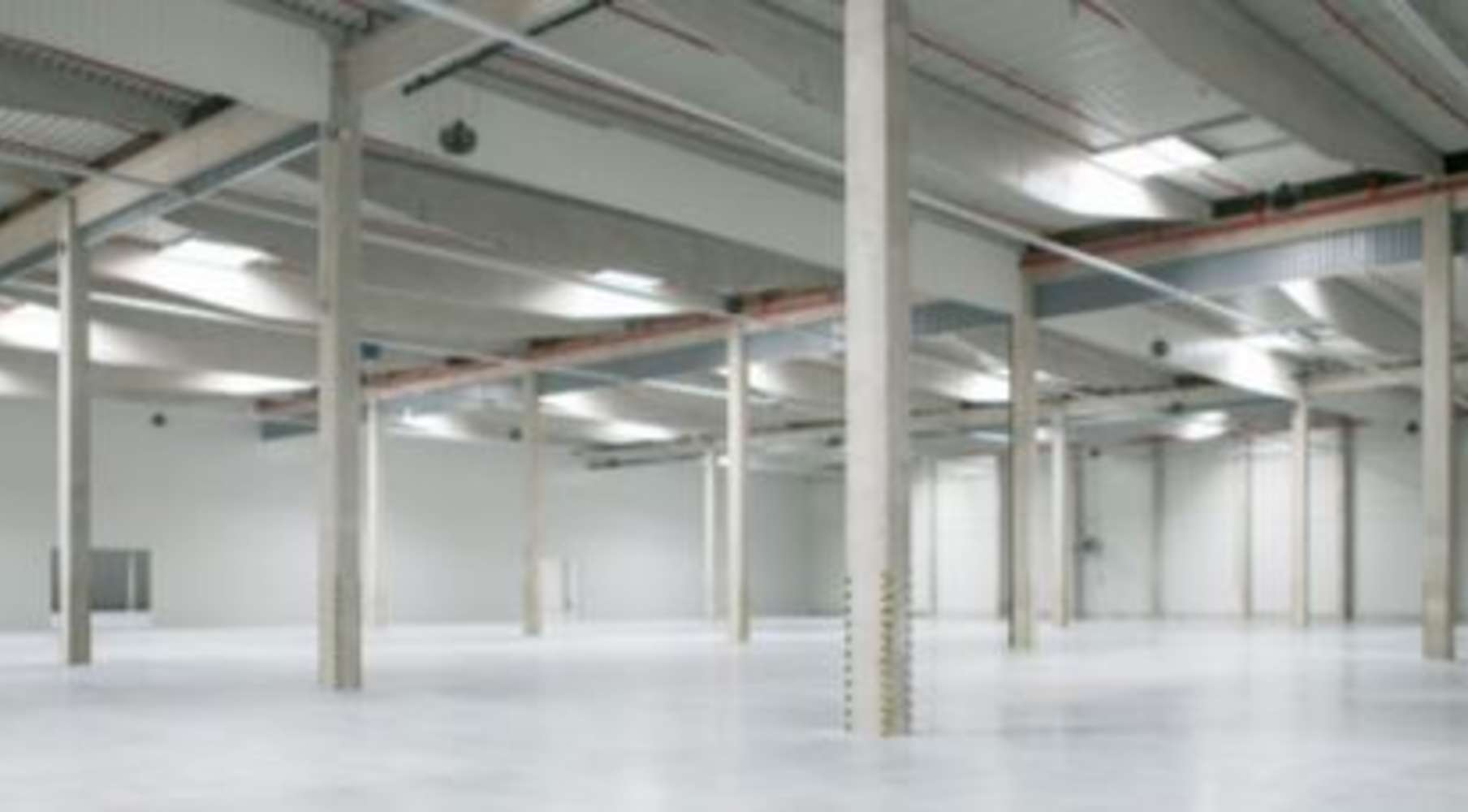 Industrial and logistics Cerhovice,  - CTPark Cerhovice