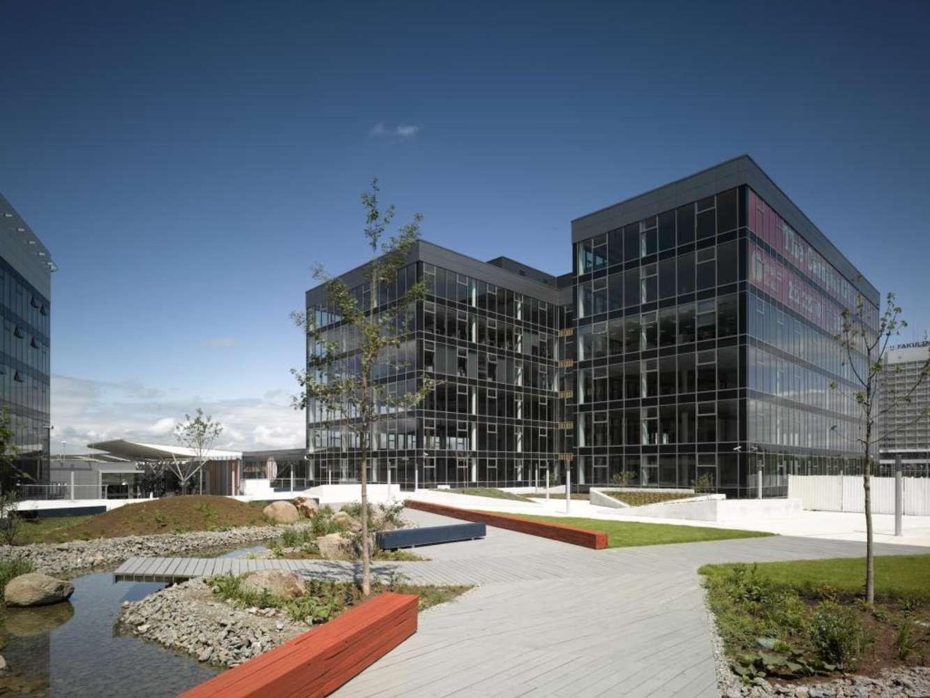 Kanceláře Brno, 625 00 - Campus Science Park - Building D - 9