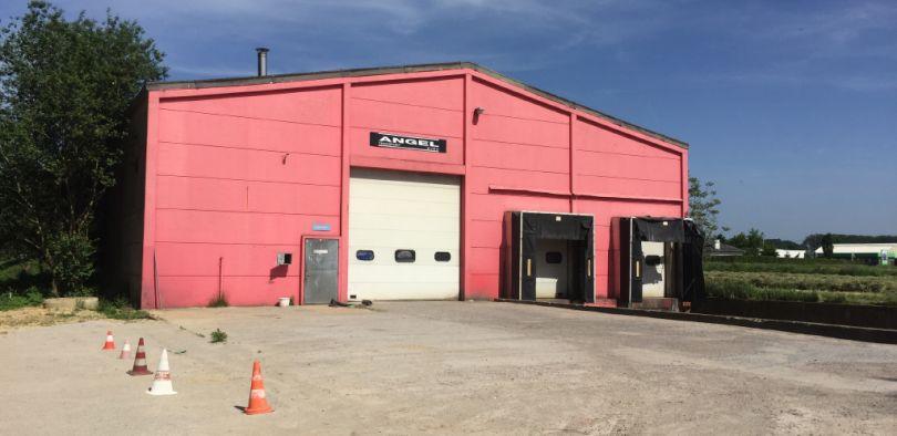 Industrie & Logistiek te huur Bornem