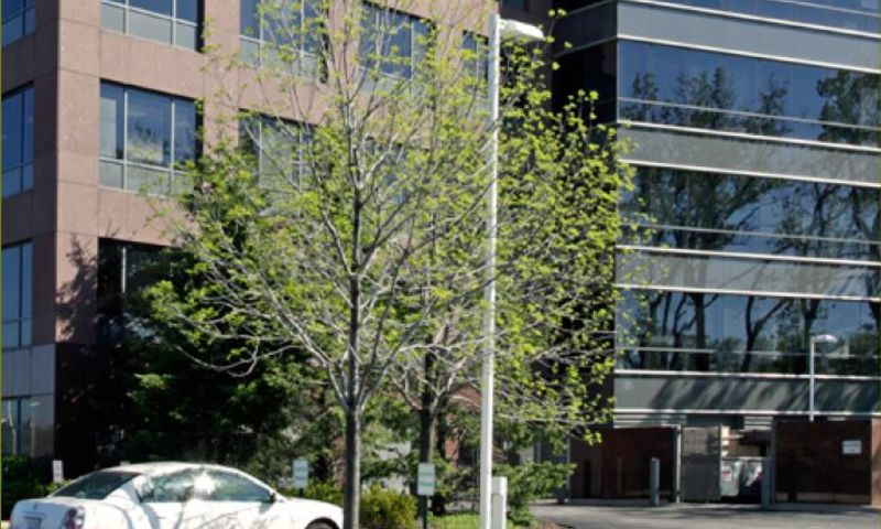 1101 Skokie Blvd - Office - Lease, Sublease - Property View