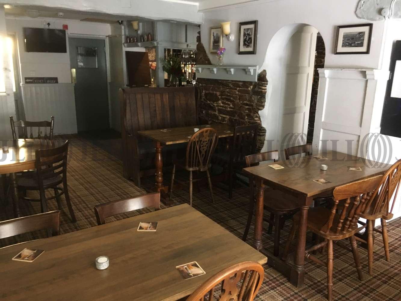 Pub Brixham, TQ5 9HZ - The Burton Hotel - 1725