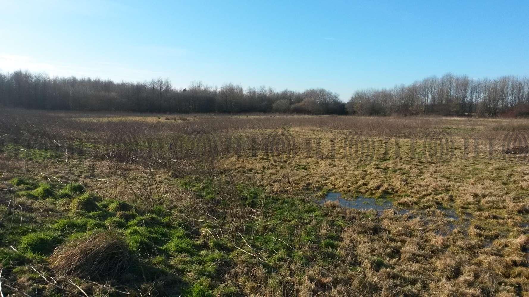 Land St helens, WA11 8LY - Sandwash Close - 20150203124042