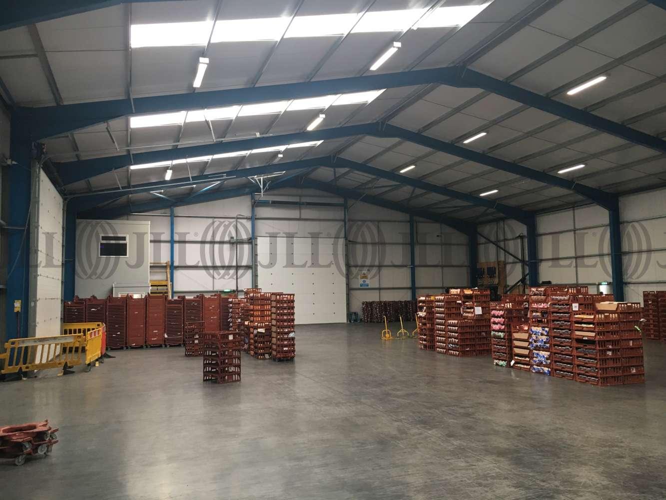 Industrial and logistics Cullompton, EX15 3FG - Unit 1 Carlu Close - 1