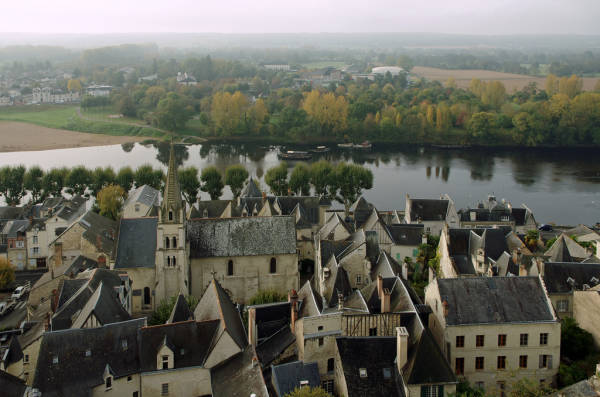 Activités/entrepôt Indre-et-loire, undefined - Location de locaux d'activité en Indre-et-Loire (37) - 4