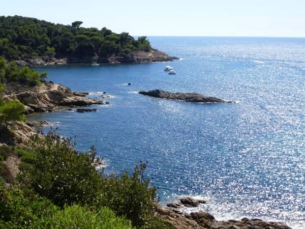 Bureaux , undefined - Location Bureaux Languedoc-Roussillon - 4