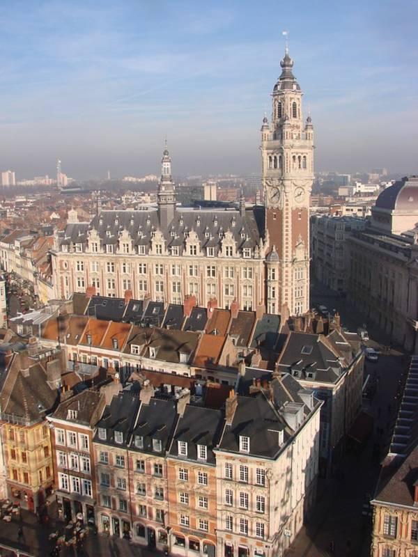 Activités/entrepôt , undefined - Location locaux d'activité Lille (59000) - 4