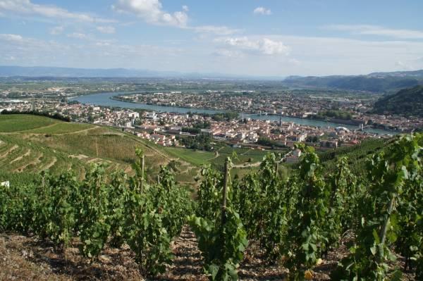 Bureaux , undefined - Location de bureaux en Drôme (Rhône-alpes) - 4