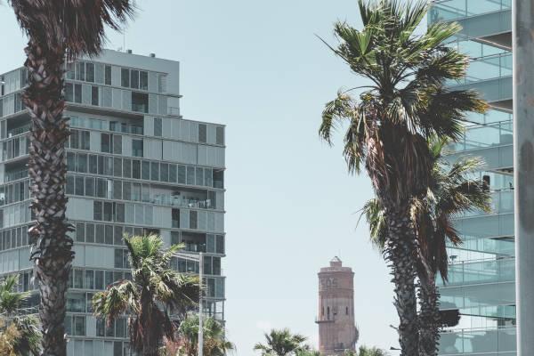 Oficina , undefined - Alquiler de oficinas en Zona Franca, Barcelona - 2