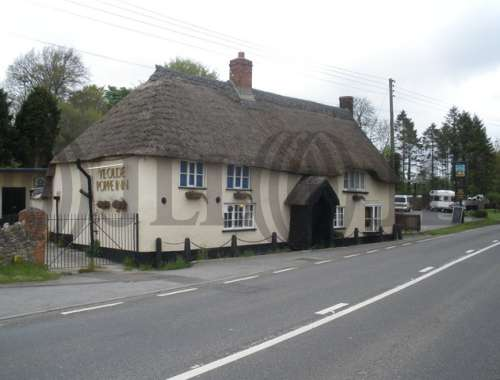 Pub Chard, TA20 2NZ - The Poppe Inn - 64116
