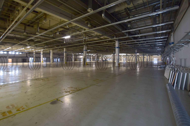 Hallen Kamp-lintfort, 47475