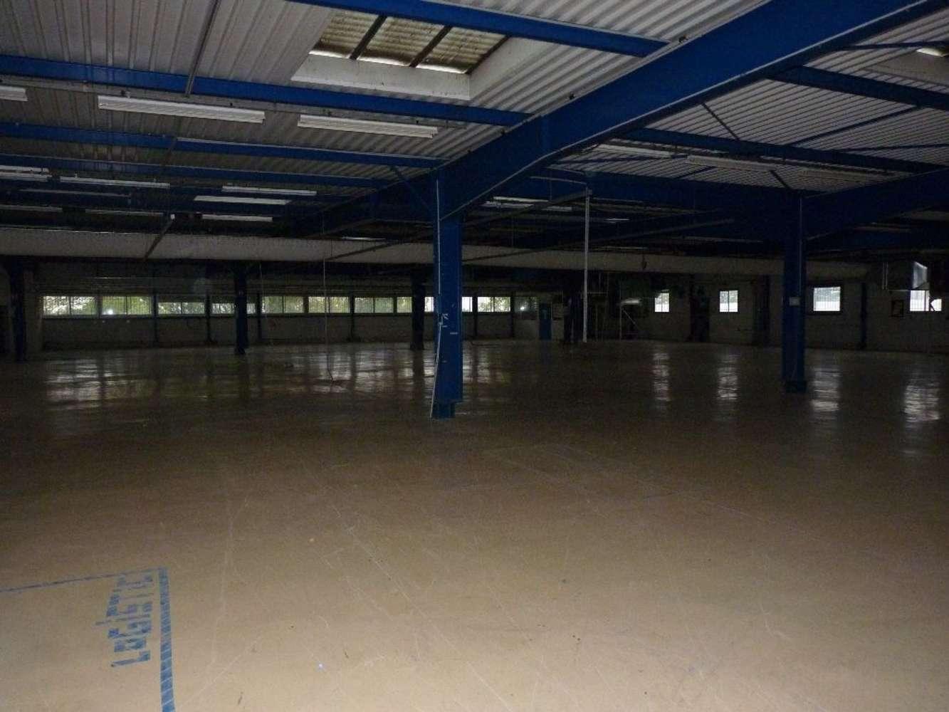 Activités/entrepôt Caluire et cuire, 69300 - Location locaux d'activité Lyon Nord