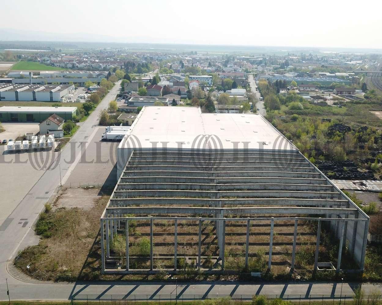 Hallen Gernsheim, 64579