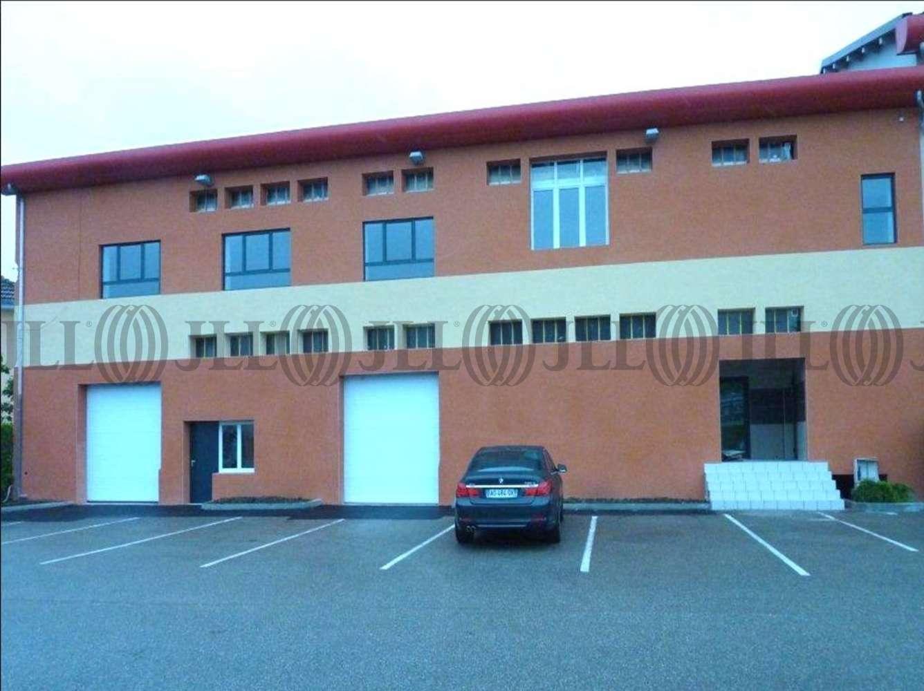 Activités/entrepôt Decines charpieu, 69150 - PARC WILSON