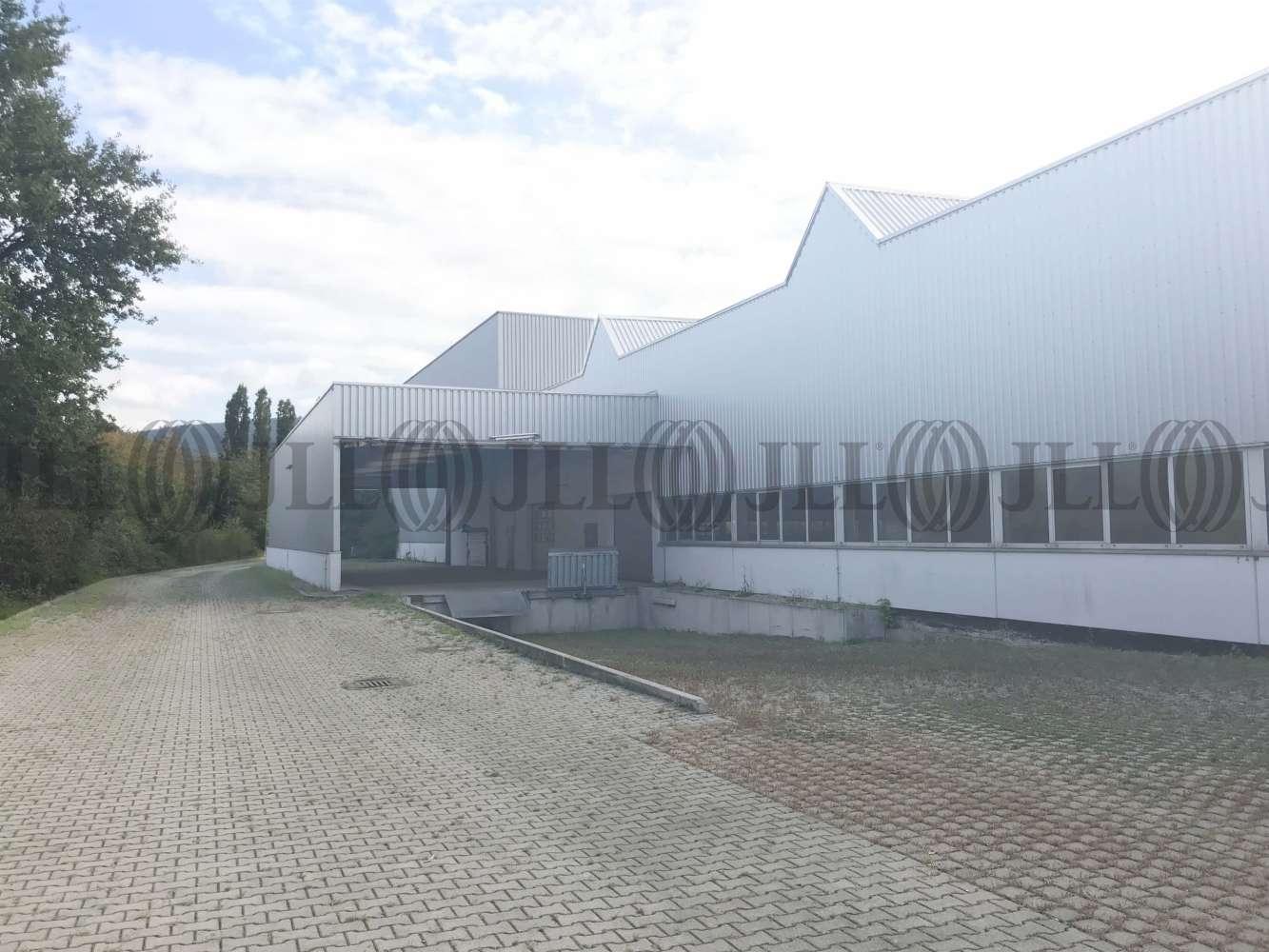 Hallen Leimen, 69181