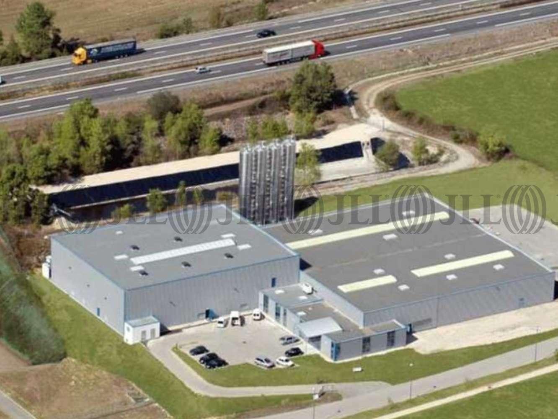 Activités/entrepôt Bressolles, 01360 - 405 CHEMIN DES VIGNES