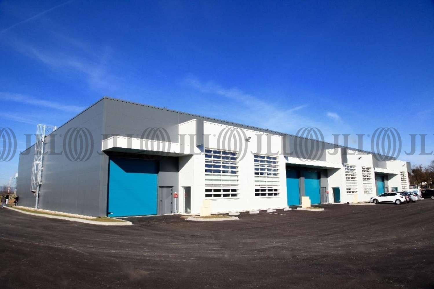 Activités/entrepôt Venissieux, 69200 - PARC SUD ACCESS