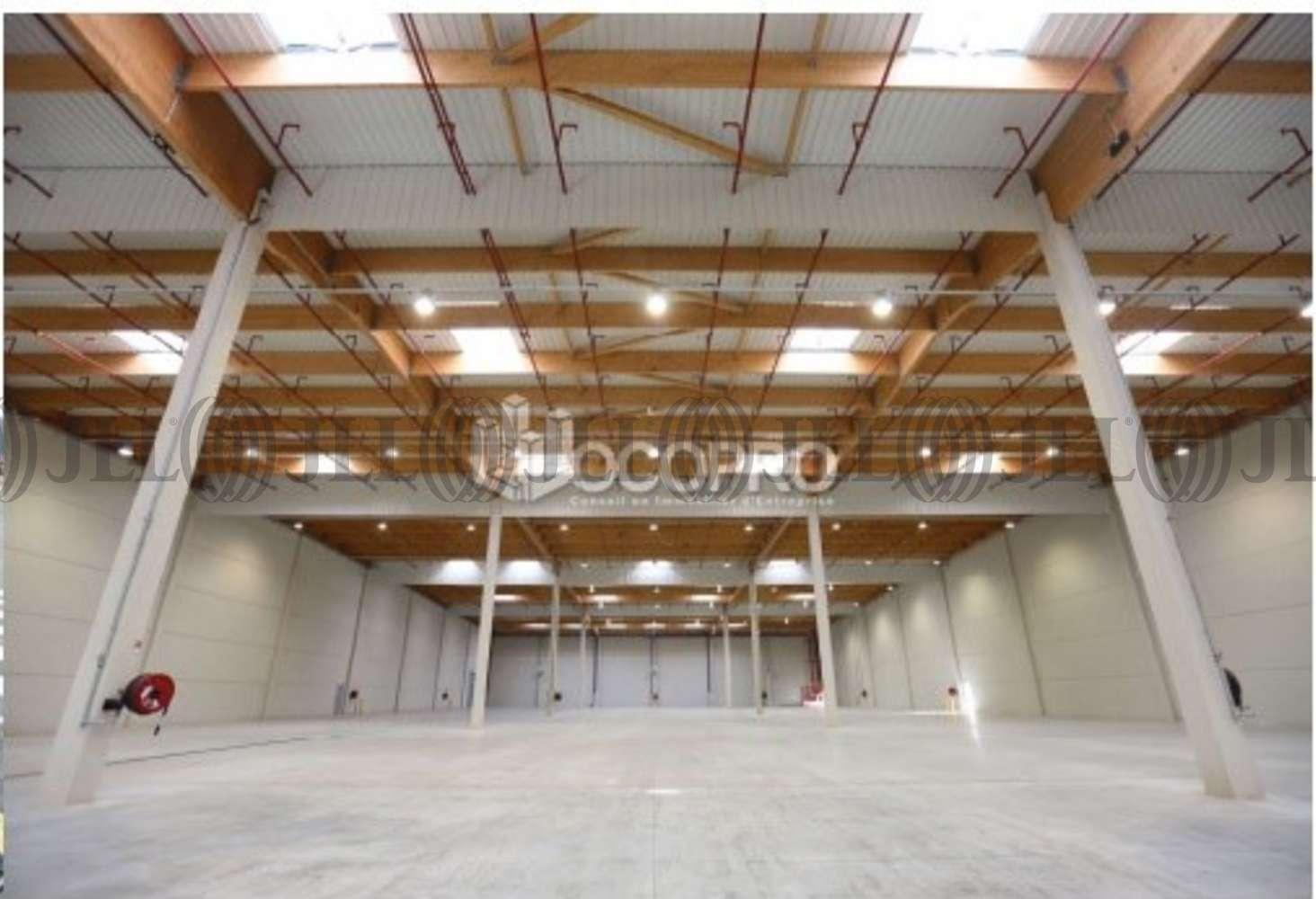 Activités/entrepôt Les arcs, 83460 - PARC DES BREGUIERES