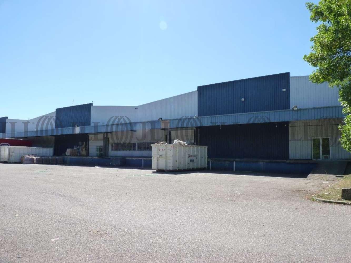 Activités/entrepôt Dardilly, 69570 - LOCATION ENTREPOT DARDILLY - LYON NORD